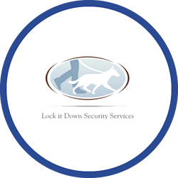 Lock It Down Security Logo
